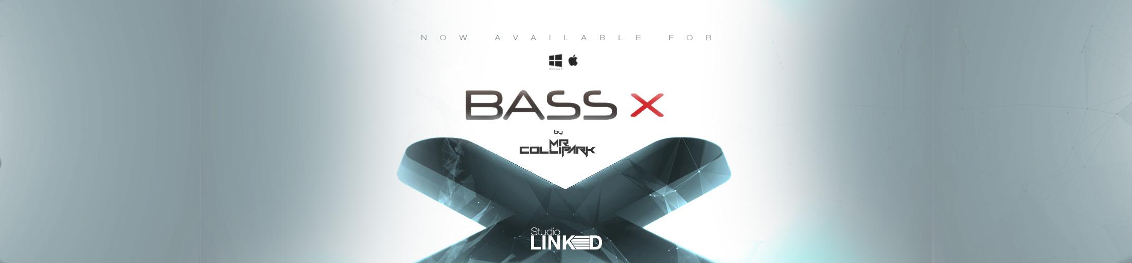 bassx-banner-12